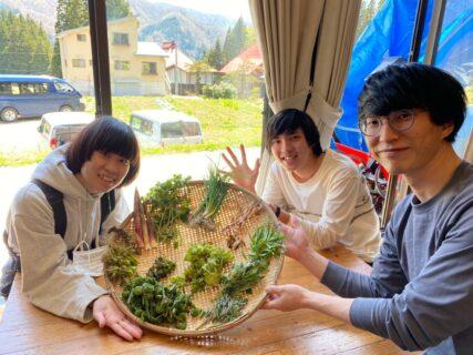 長野視察旅行報告レポート①(小谷村ゲストハウス「梢の雪」〜山菜狩りツアー編)